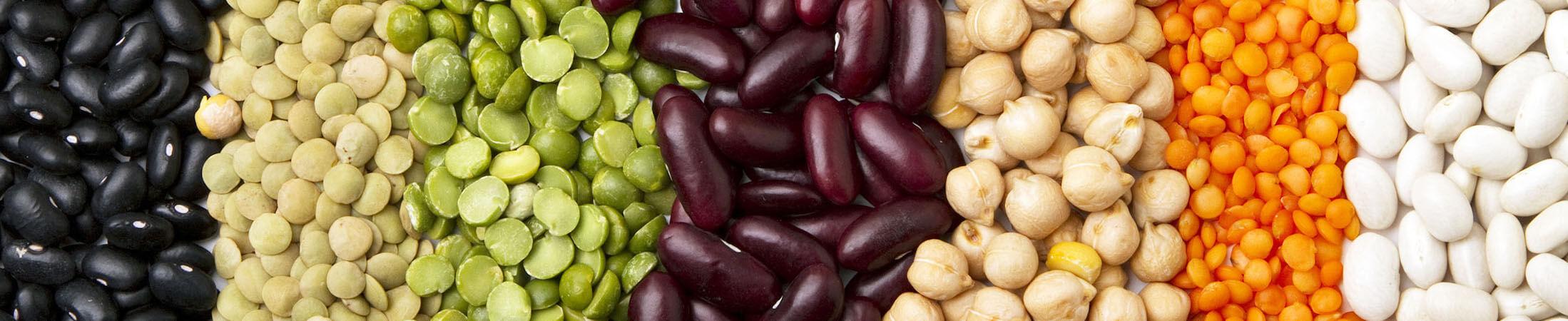 Foto Legumi stagione colori nutrizione